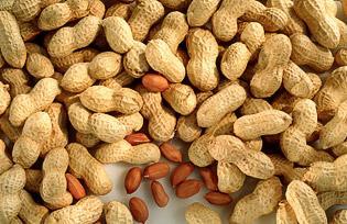 Peanut Allergy Trial