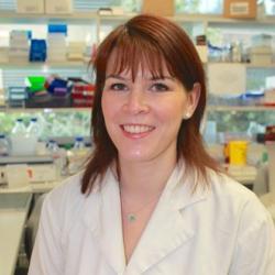 Dr Lori  Turner