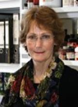 Professor Ashley Moffett's picture